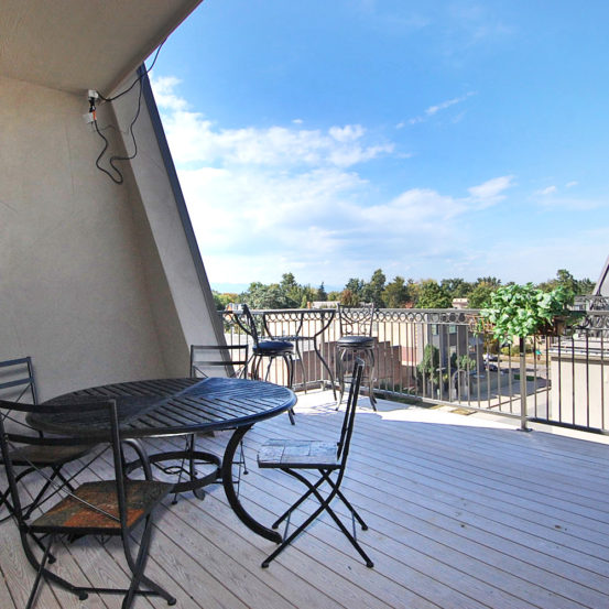 3 Story W Wash Park Rowhome Sunroom Rooftop Deck 2